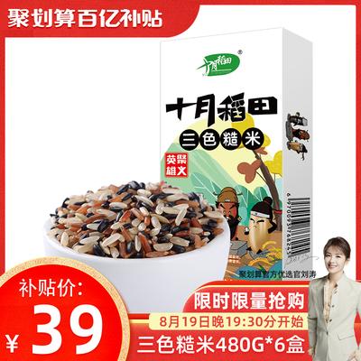 【刘涛-刘一刀】十月稻田 轻食三色糙米红黑米健身脂减饭480g*6盒