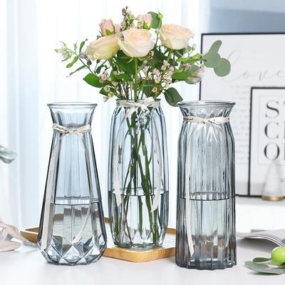 玻璃透明摆件客厅插花网水养红花瓶