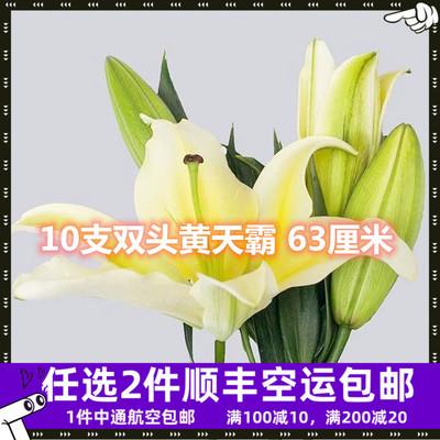 黄百合花直批百合新鲜家用水养鲜花