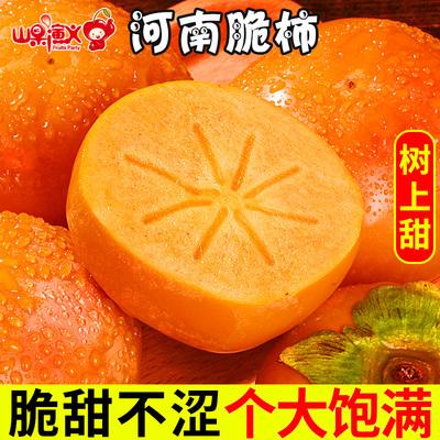 巧克力脆柿整箱5斤新鲜甜10硬柿子